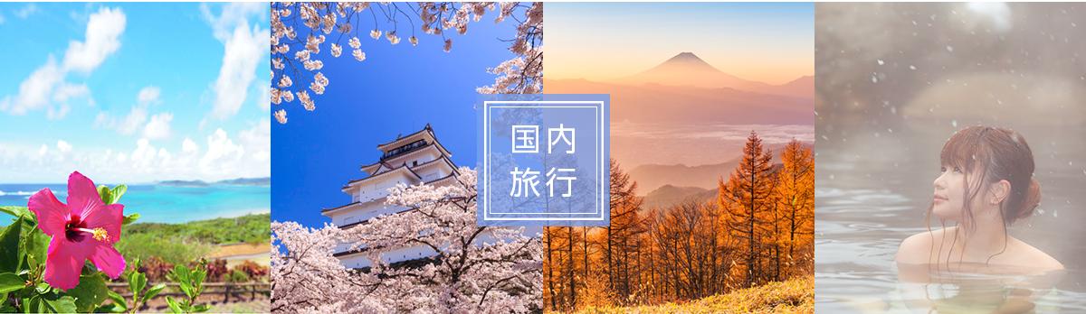 kokunairyoko_image1